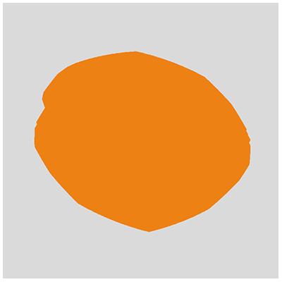 scansoftware-3-400